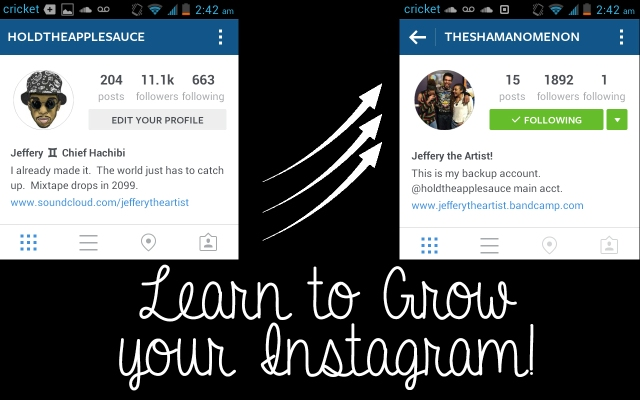 Pt2InstagramGrowth